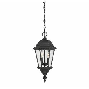 Randel 2-Light Outdoor Hanging Lantern