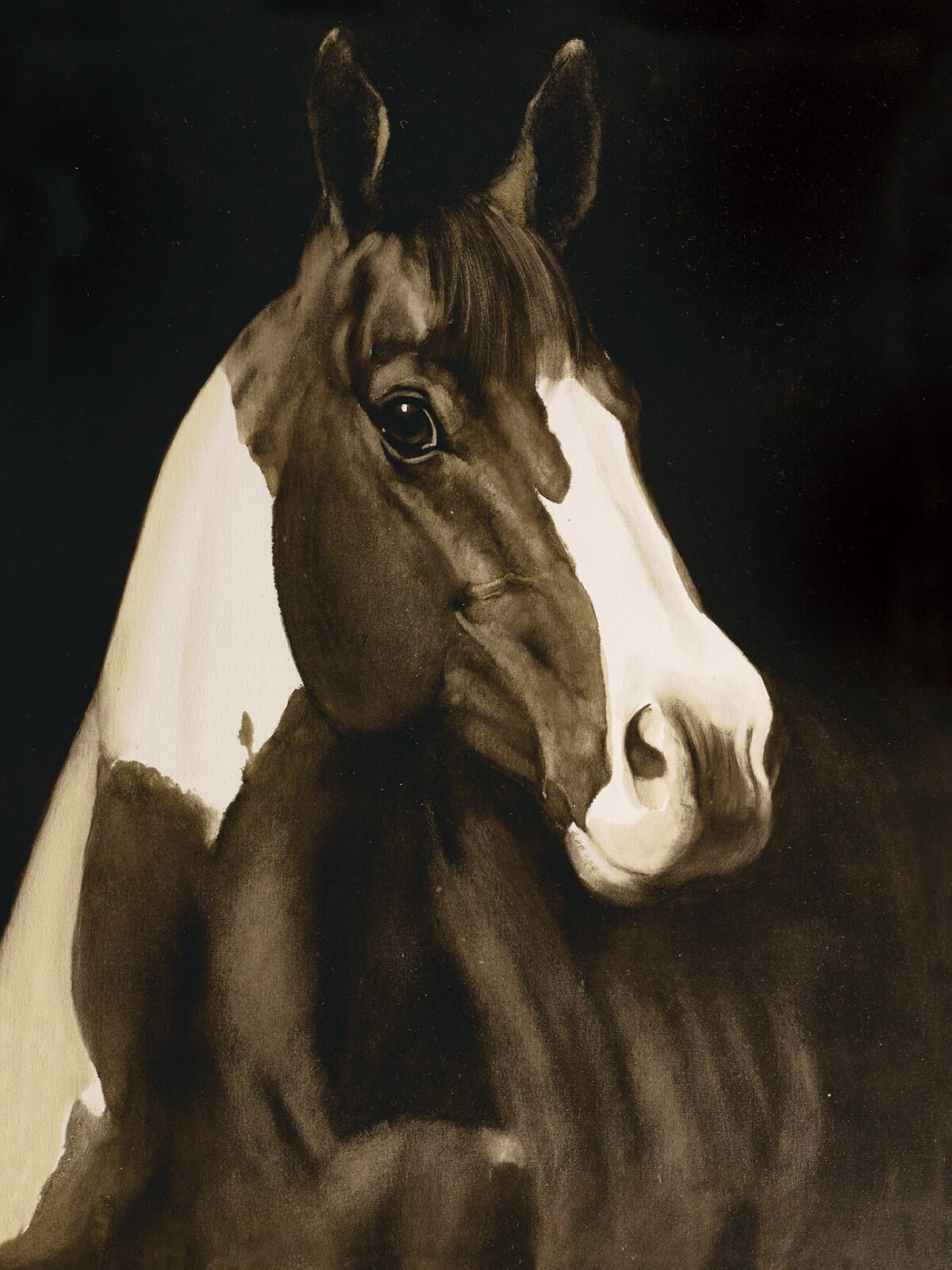 Union Rustic Montana Horse I Oil Painting Print On Wrapped Canvas
