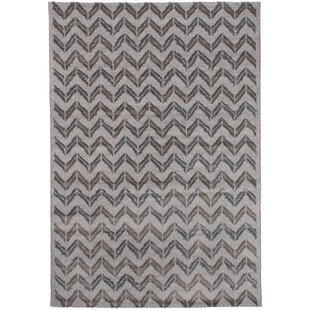 Freemont Dark Gray Light Area Rug
