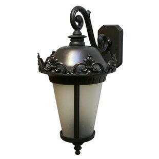 Buy clear Petrey 3-Light Outdoor Wall Lantern By Alcott Hill