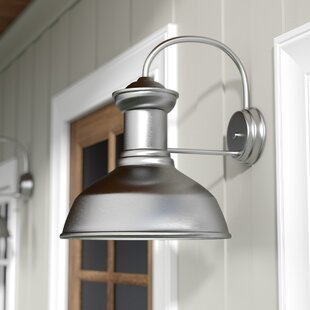 Vallie 1-Light Outdoor Barn Light