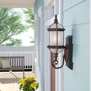 Sol 72 Outdoor Estero 1-Light Outdoor Sconce