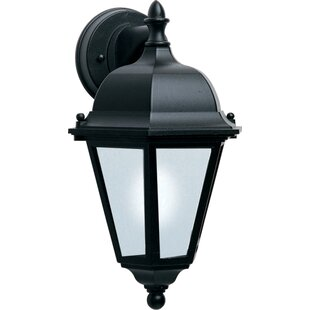 Alcott Hill Mathilda Traditional 1-Light Outdoor Wall Lantern