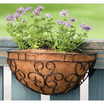 Cokato Metal Rail Planter