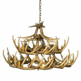 Millwood Pines Constance 15-Light Novelty Chandelier