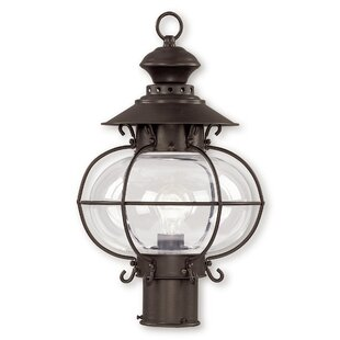Shielo Outdoor 1-Light Lantern Head by Longshore Tides