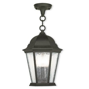 Darby Home Co Busse 3-Light Outdoor Hanging Lantern