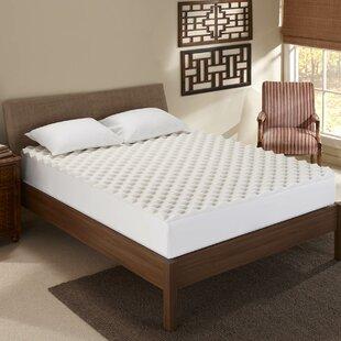 Sleep Innovations Inc. Convoluted 1.5