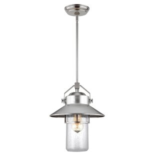 Tolliver 1-Light Outdoor Hanging Lantern