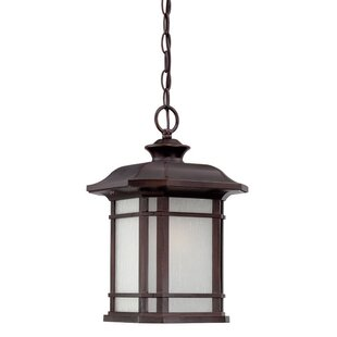 Darby Home Co Broadmoor 1-Light Outdoor Hanging Lantern