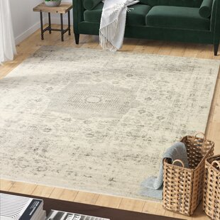 Riggs Ivory/Silver Rug by Mistana