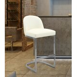 Tuscola Bar & Counter Stool by Everly Quinn