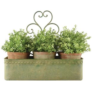 Valletetta Metal Wall Planter By Brambly Cottage