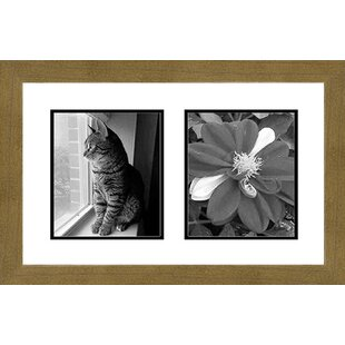 8 X 10 White Collage Picture Frames You Ll Love In 2021 Wayfair