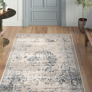 Wayfair Blue Area Rugs You Ll Love In 2021