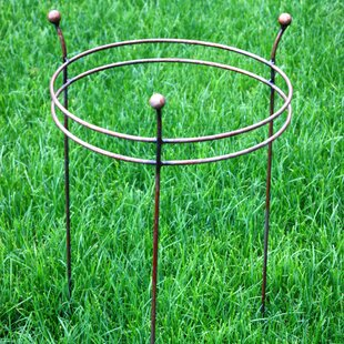 Double Ring Frame By Symple Stuff