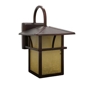 Efficient Lighting 1-Light Outdoor Wall Lantern
