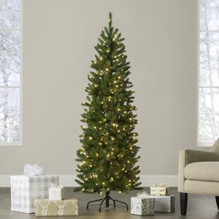 kingswood pencil 6 green fir artificial christmas tree with 200 clear lights - Pre Lit And Decorated Christmas Trees
