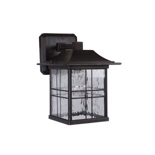 Sanderson 1-Light Outdoor Wall Lantern