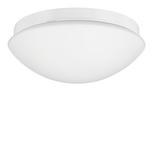 Viso 1 Light Outdoor Ceiling Light By 17 Stories