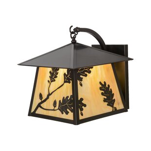 Reviews Greenbriar Oak 1-Light Outdoor Wall Lantern By Meyda Tiffany