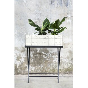 Gaiter Tray Plant Stand by Ivy Bronx
