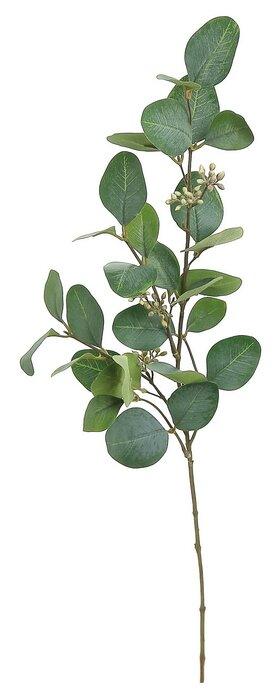 Silver Dollar Eucalyptus Spray Stem