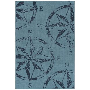 Ciaran Blue Indoor/Outdoor Area Rug