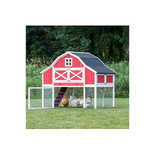 Gambrel XL Chicken Coop With Chicken Run, Nesting Box, Roosting Bar By My Pet Chicken
