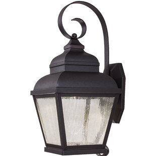 Read Reviews Amedori 2-Light Outdoor Wall Lantern By Darby Home Co