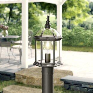 Affordable Caroline Outdoor 1-Light Lantern Head By Astoria Grand