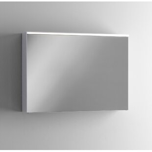 Gilbert 115cm X 65cm Surface Mount Mirror Cabinet With Lighting By Ebern Designs