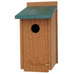 Woodlink Audubon Going 19.5 in x 13.5 in x 8 in Bluebird House