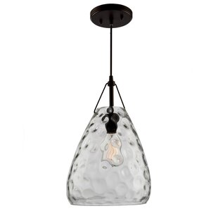 Brayden Studio Bowker 1-Light Cone Pendant