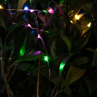 20 Light LED Diwali Party Fairy Light By The Seasonal Aisle