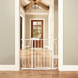 Buy clear Walk-Thru Doorway Safety Gate ByEvenflo