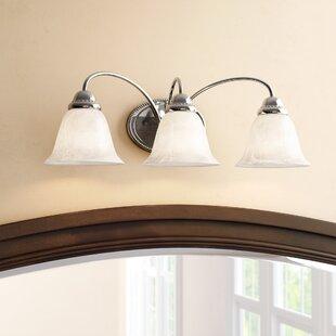 Order Brigance 3-Light Vanity Light By Charlton Home