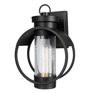 Aldham 1-Light Outdoor Wall Lantern