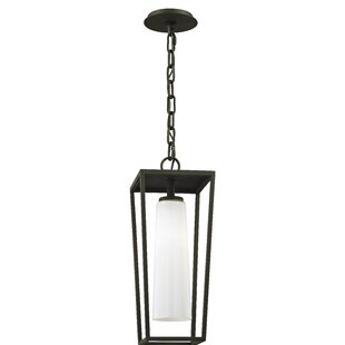 Oaks 1-Light Outdoor Hanging Lantern