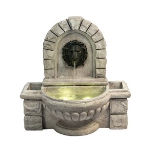 Fennia Polyresin Lion Head Wall Fountain With LED Light By Charlton Home