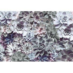 Komar Shades 145' x 100