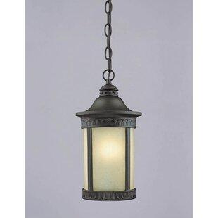 Westinghouse Lighting Castle Inn 1-Light Outdoor Pendant