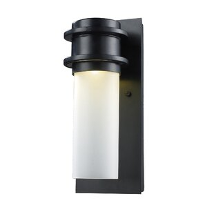 Bargain Dossett 1-Light Outdoor Sconce By Ivy Bronx