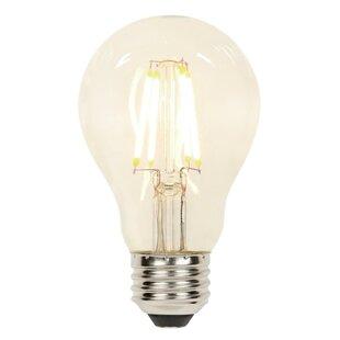 5 Watt E26 Dimmable Led Edison Light Bulb Set Of 2