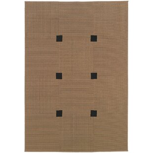 Gabriella Brown Indoor/Outdoor Area Rug