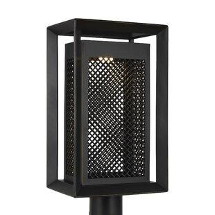 Hutton Outdoor 1-Light LED Lantern Head by Williston Forge