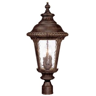 Astoria Grand Appel Outdoor 3-Light Cast Aluminum Lantern Head