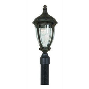 Astoria Grand Huntington Outdoor 1-Light Lantern Head