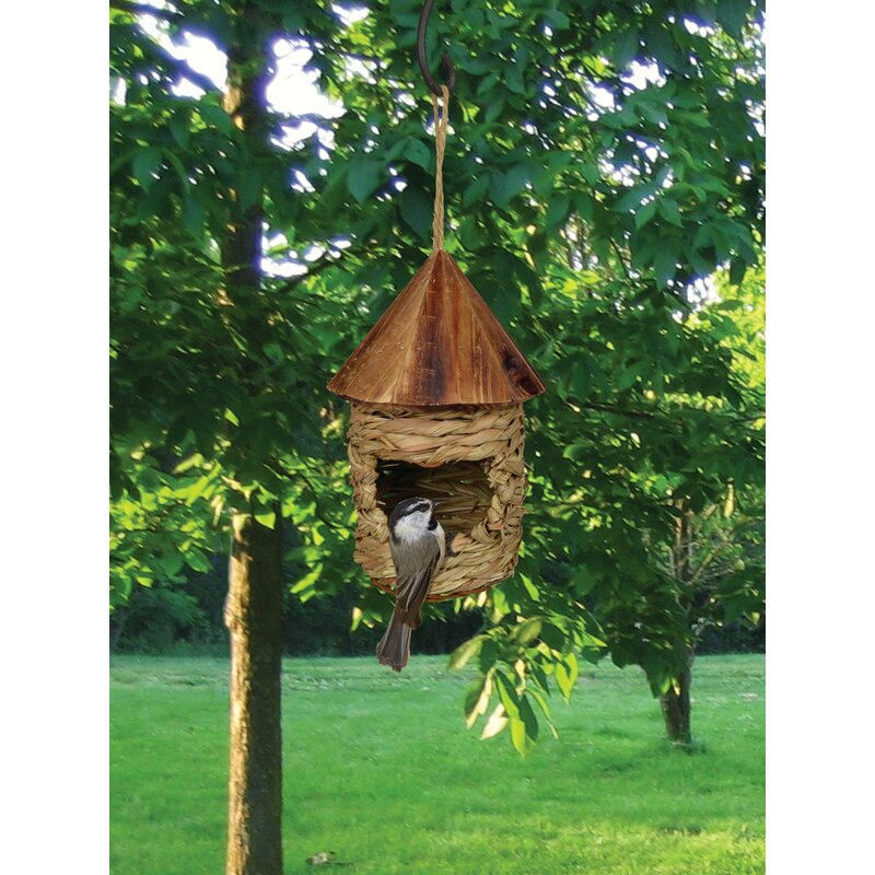 Songbird Essentials 7 In X 4 In X 4 In Birdhouse Reviews Wayfair