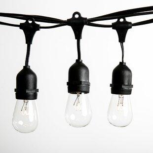 24 ft. 12-Light Standard String Lights by Hometown Evolution, Inc.